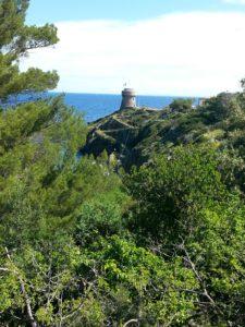 Torre Genovese